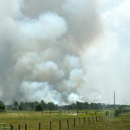Wildfire Smoke – Its Impact, Symptoms And Precautions